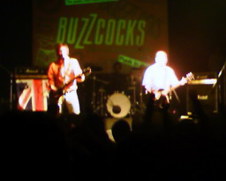 Buzzcocks in Argentina 1